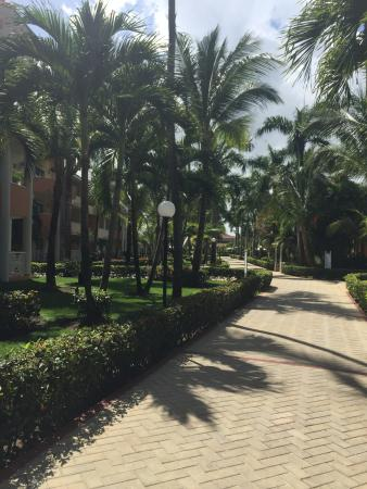 Walkway from Ambar I to the pool or beach. I never get tired of this it is so pretty.