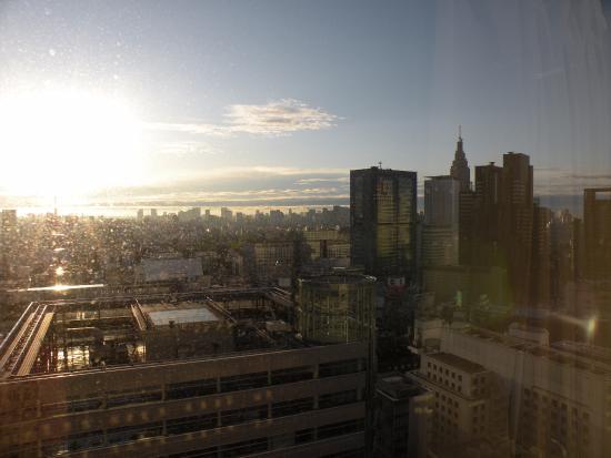 Keio Plaza Hotel Tokyo: vista dal 36o piano