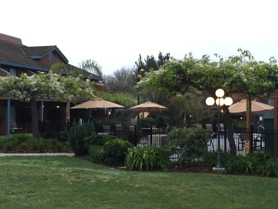BEST WESTERN Seacliff Inn: Beautiful grounds and nicely kept.