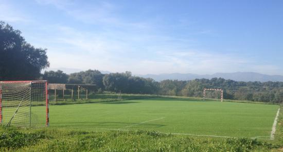 Complejo Rural Los Jarales: Campo de futbol