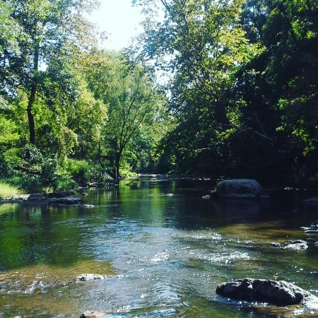White Clay Creek State Park : There are common trails that are well used and some even paved but there are also lesser used pa