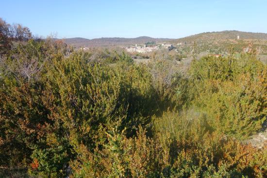 Le Barry du grand Chemin : On a hike through the bushland surround Le Caylar. In the distance is La Couvertoirade.