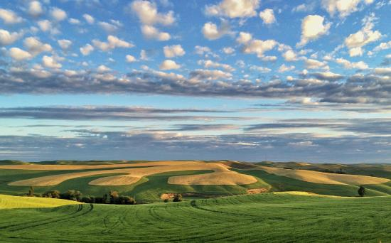 Palouse Photography Tours