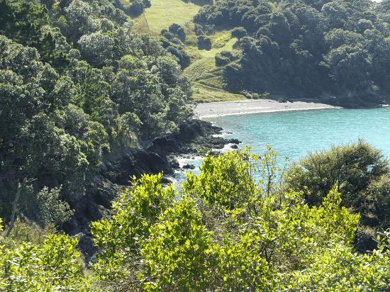 เกาะไวเฮเก, นิวซีแลนด์: Stunning coastal tracks