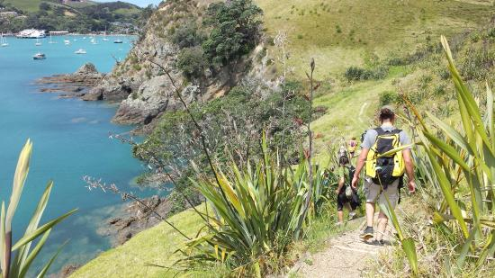 Isla Waiheke, Nueva Zelanda: Returning to Matiatia