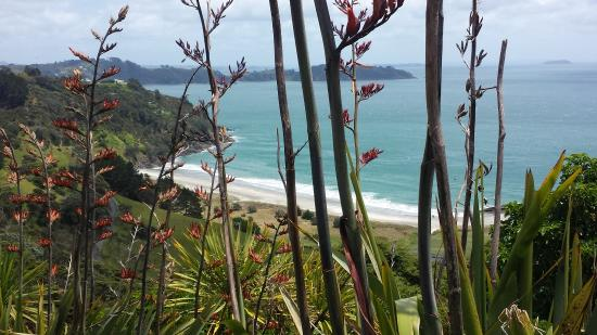 Waiheke Island, New Zealand: Stunning North coast