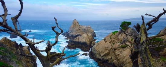 Monterey Adventure Tours