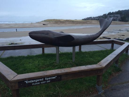 Conference Rooms In Cannon Beach Oregon