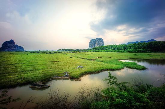 Maotang wetland park
