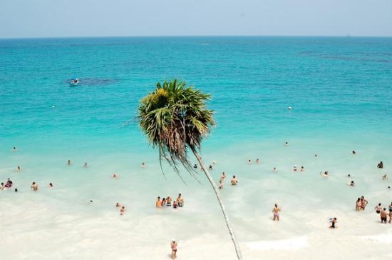 Hotel Cabañas Los Lirios: the beach