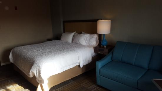 Hampton Inn & Suites Los Alamos: king bedroom
