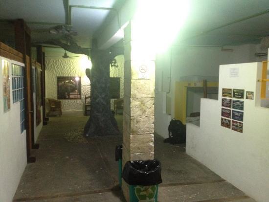 Hostal Mayapan : photo7.jpg