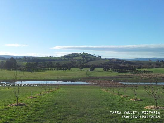 Blue Mountains, Australie : The view in front of the Yarra Valley Chocolate Factory