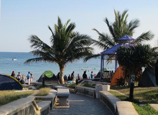Zeytoon Park
