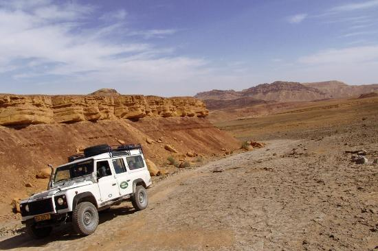 Petra Tours: טיול ג'יפים במכתש רמון - יציאה מנחל ארדון