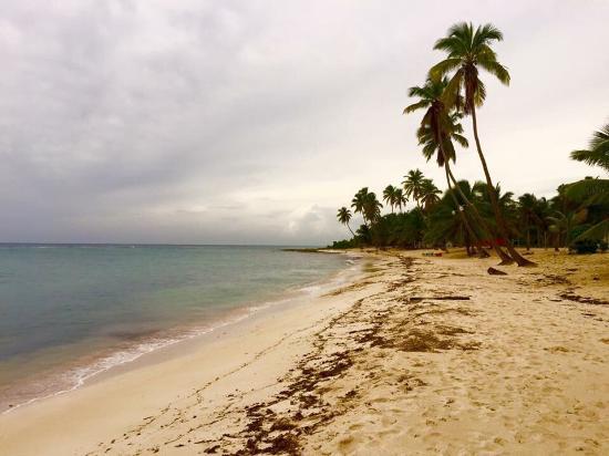 Bayahíbe, República Dominicana: Mariposa Tours