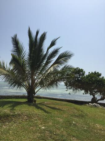 Tijara Beach: photo4.jpg