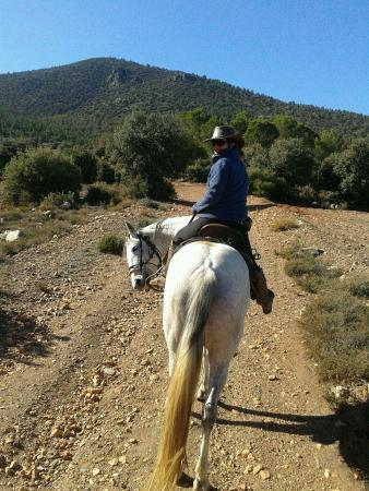 Sulayr Trails