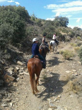 Cogollos de Guadix, España: Ruta a caballo