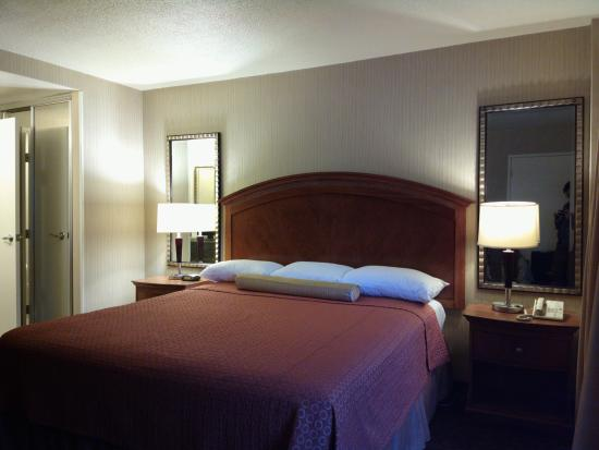Royal Pacific Motor Inn: It looks a little old from the outside but the rooms are spacious for an SF downtown hotel. Newl