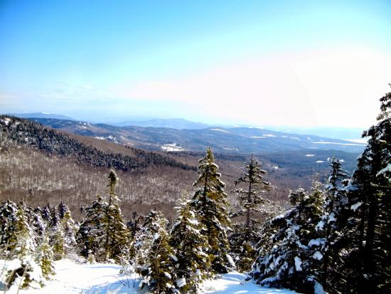 Alexandria, Nueva Hampshire: View from the outlook near the cabin trail entrance