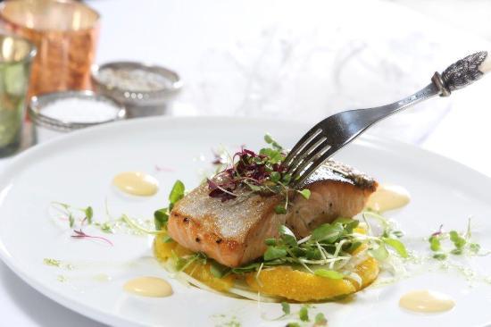 Watermark Restaurant: salmon, oranhe, artichoke puree, cress