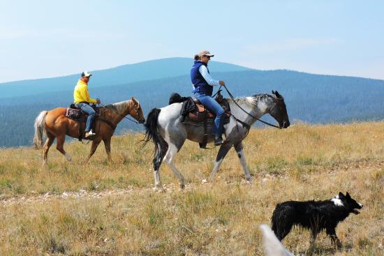 Bonanza Creek Guest Ranch : Amazing views!