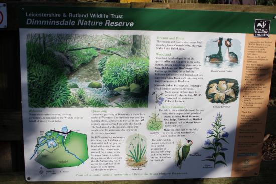 Ticknall, UK: Map & Wildlife