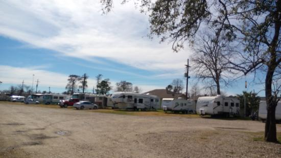 Three Oaks and a Pine RV Park