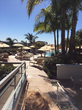 adult pool here we come picture of park hyatt aviara resort rh tripadvisor com
