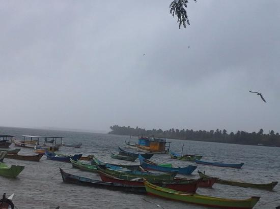 """Piacabucu, AL: Vista das embarcações de pesca ou para passeio à foz do """"Velho Xico"""""""