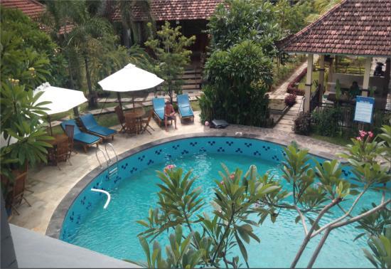 Hotel my lovina bewertungen fotos preisvergleich for Swimming pool preisvergleich
