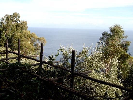 Bilde fra La Grotta dei Fichi