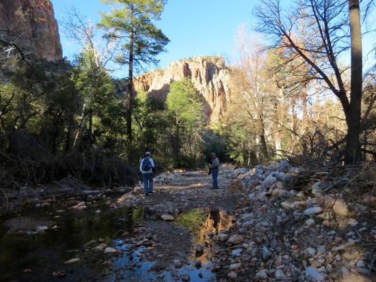 Cave Creek Canyon: South Fork Trail