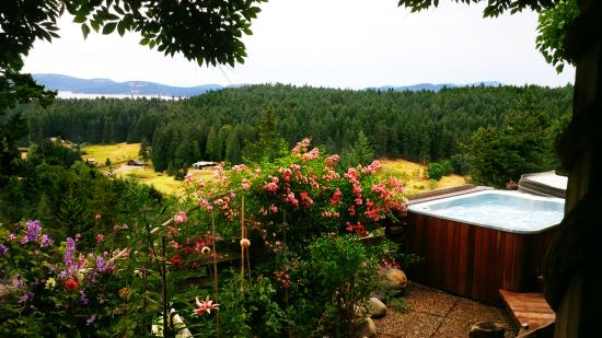 Hummingbird Hill Bed & Breakfast : Relax, Refresh and Renew