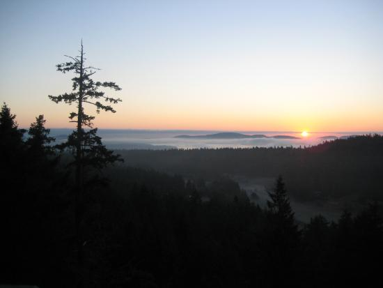 Hummingbird Hill Bed & Breakfast : Sunrise from your exclusive deck