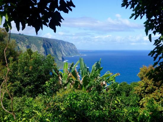 Hale Kukui: View from lanai (deck)