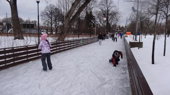 Skating Rink in Park Gorkiy