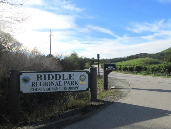 Biddle Regional Park Arroyo Grande 2020 All You Need To Know Before You Go With Photos Tripadvisor