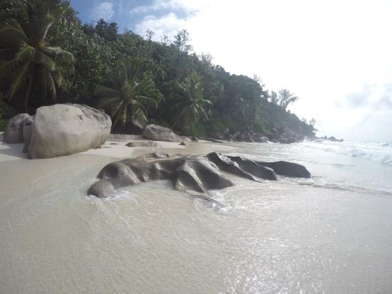 Praslin Island, Seychellerne: Beach