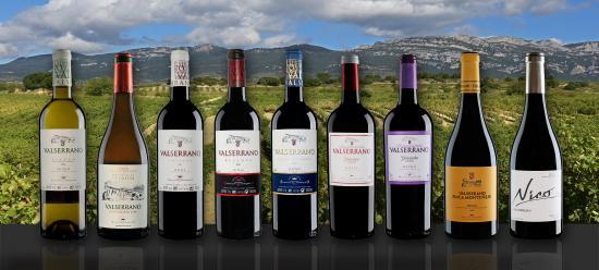 Vinedos y Bodegas de la Marquesa
