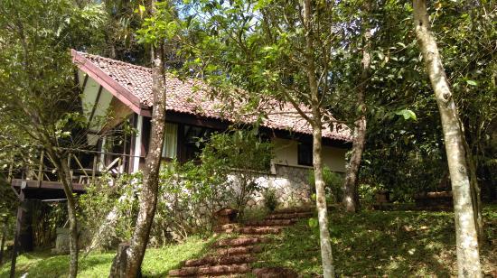 Flameback Lodges: Paddy villa...
