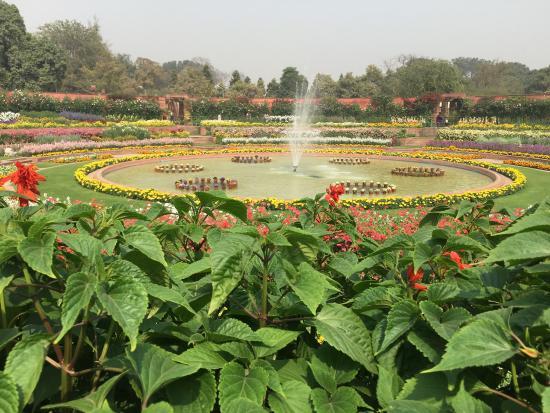 Billede af mughal garden new delhi tripadvisor Mughal garden booking