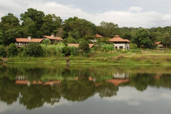 Flameback Lodges: From the lake