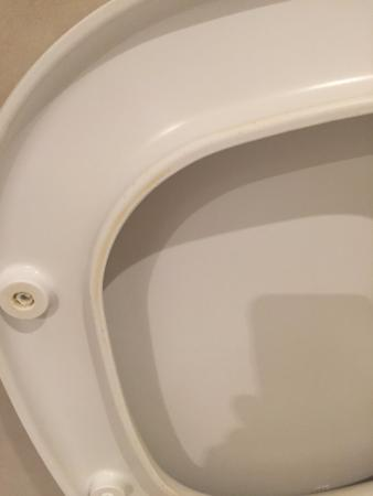 Elite Hotel: not cleaned