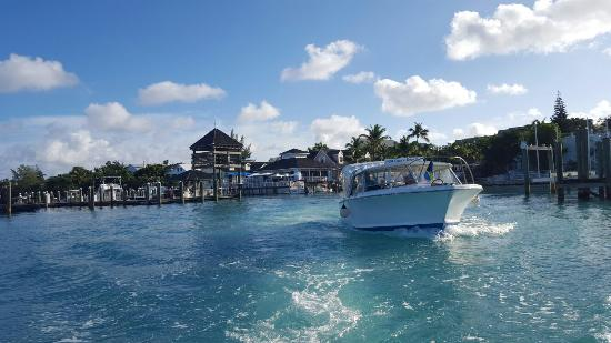 Valentines Resort and Marina: 20160222_081202_large.jpg