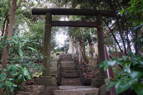 Mt. Kamakura
