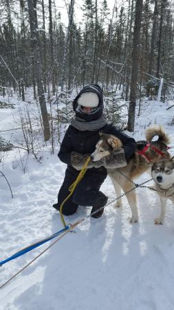 Expedition Wolf: treats after the sled-ride