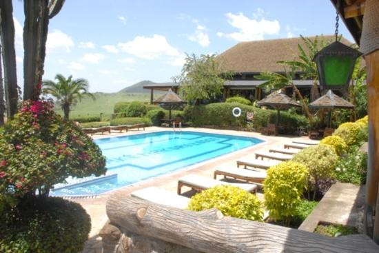 Lake nakuru lodge updated 2018 prices reviews lake for Swimming pool area
