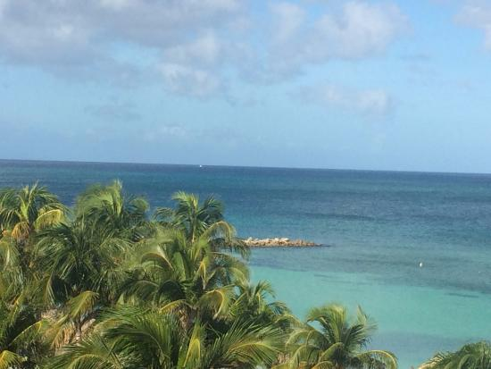 Picture of divi aruba phoenix beach resort - Divi beach aruba ...
